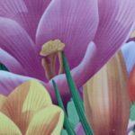 Цветы дюплекс